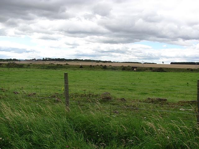 Farmland, Cheswick
