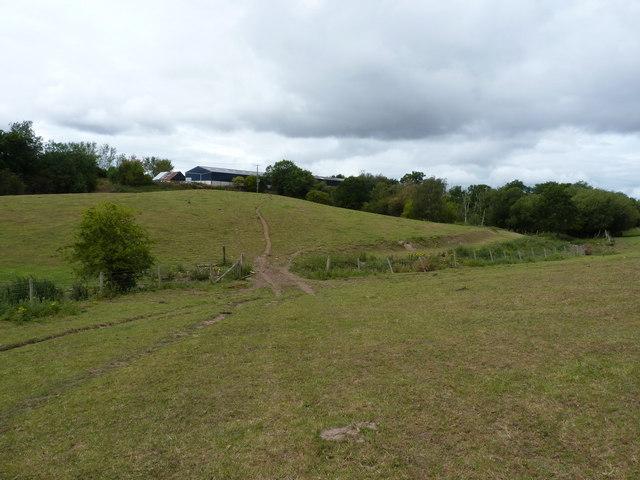 Footpath near Bomere Farm