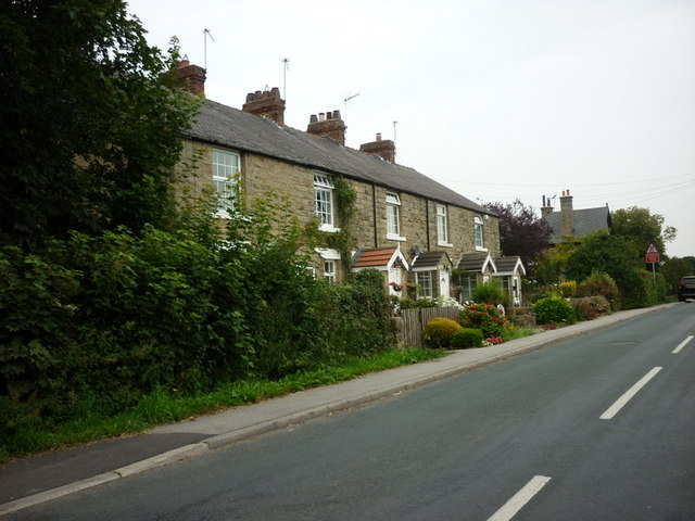 Houses on Havkil Lane, Scotton