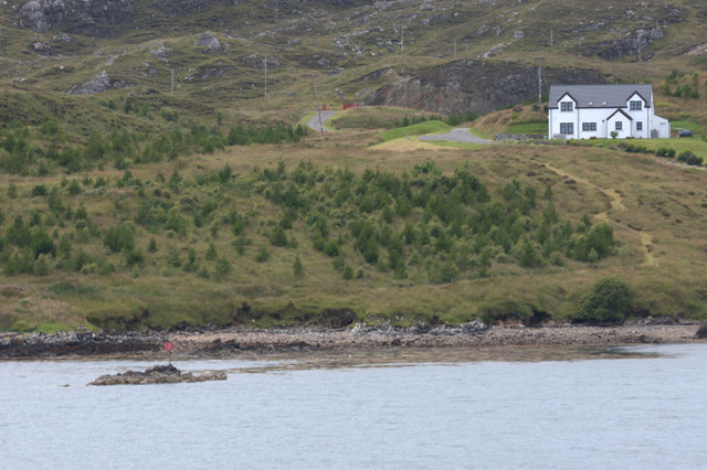 House and new forestry at Direcleit