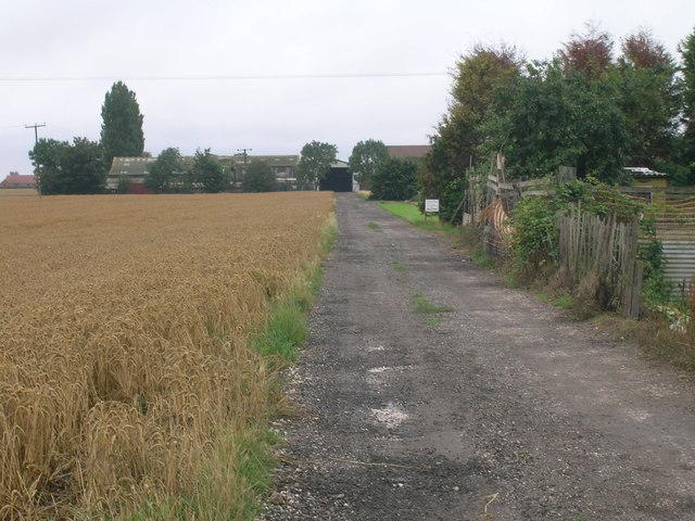 Farm track, Old Goole
