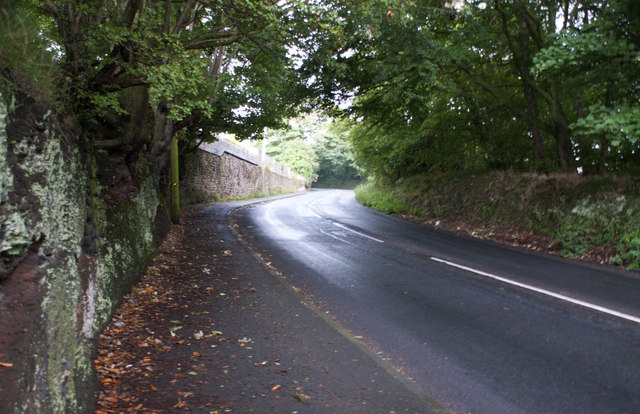 The road up Blundell's Hill