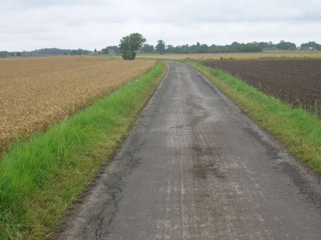 New Lane towards Reedness