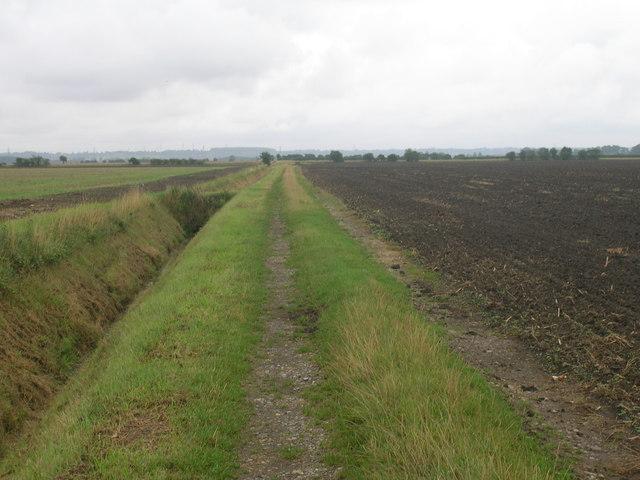 Farm track off New Lane