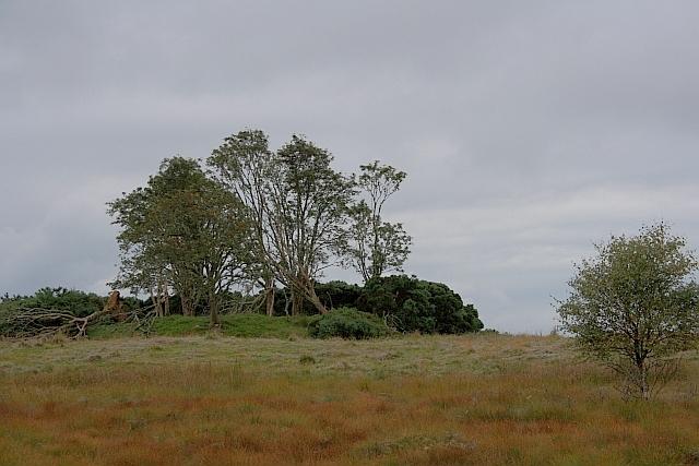 Cairn near Achnamoine