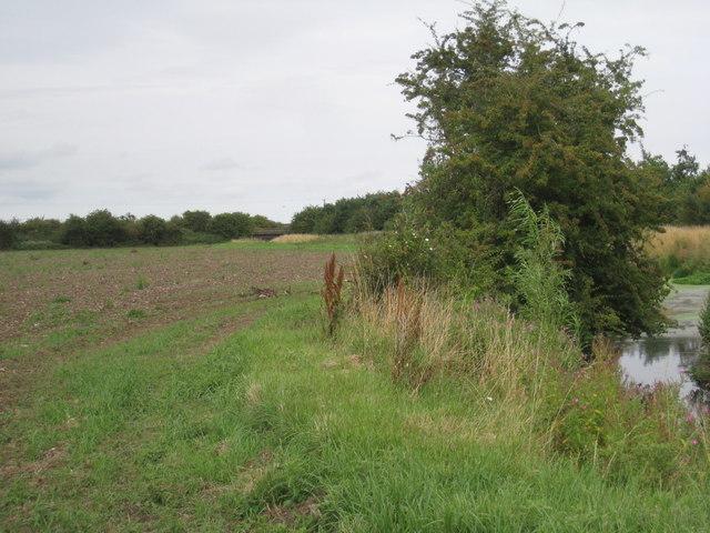 Alongside East Halton Beck