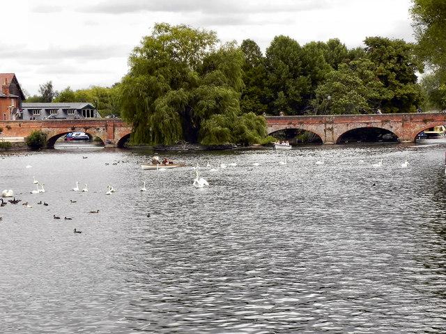 River Avon, Tramway Bridge