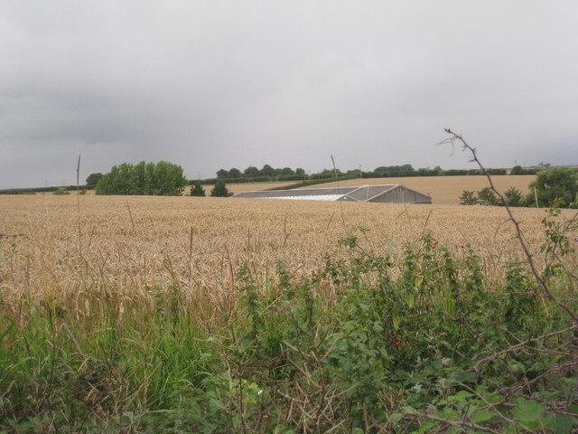 Barrow Vale Farm