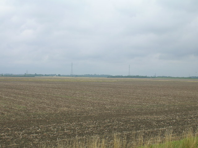 Farmland, Adlingfleet Ings