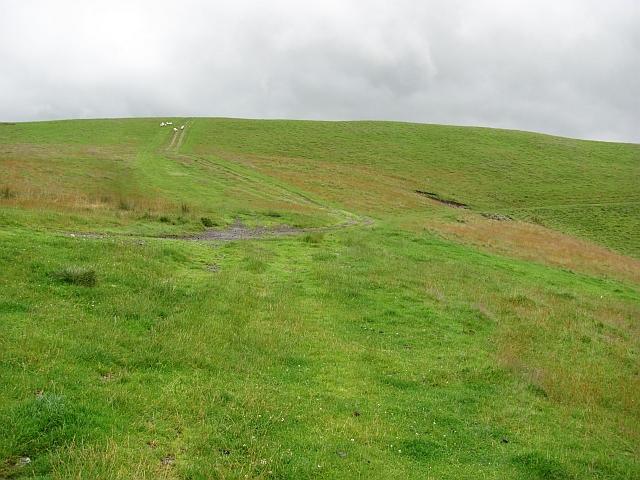 Tracks, Hamildean Hill