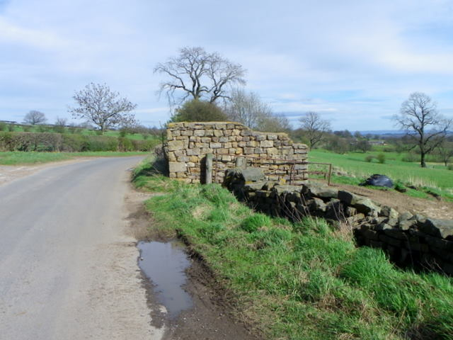 Minor road near Healey