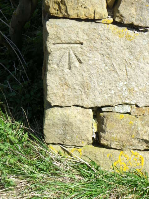 Bench Mark on Ruined Barn