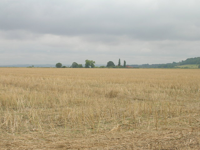 Farmland near Island House Farm