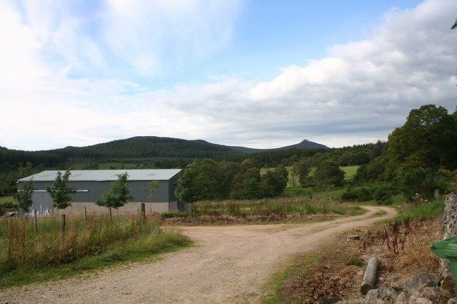 Fairview Farm