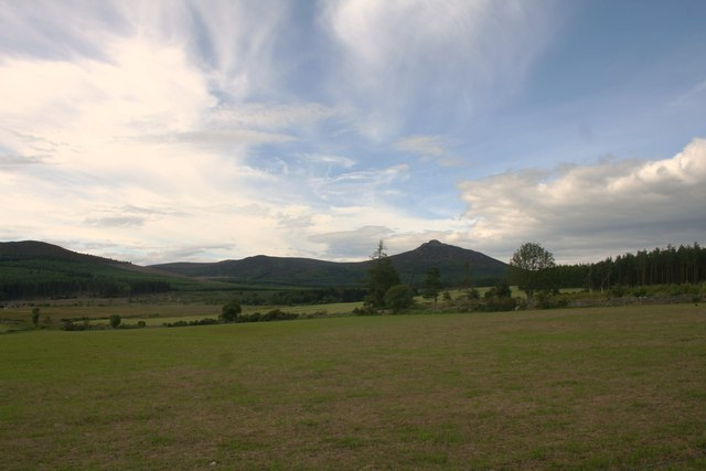 Field Before Bennachie