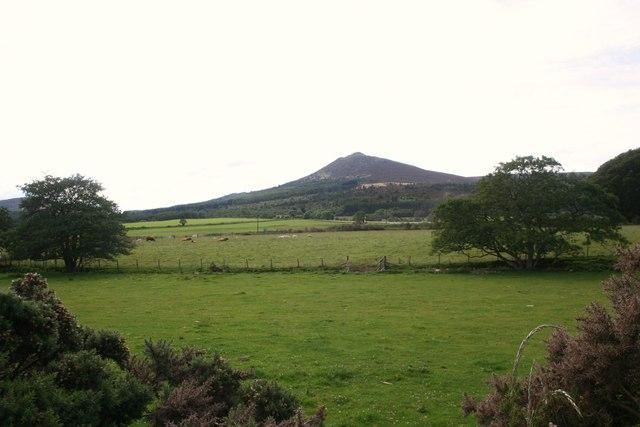 Field by the Linn Burn