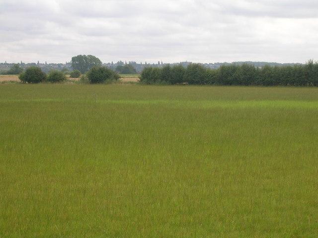 Farmland south of Amcotts