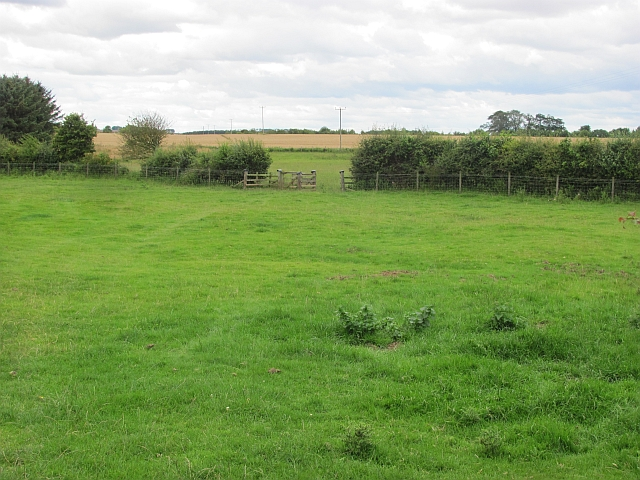 Grassland, Windmill Hill