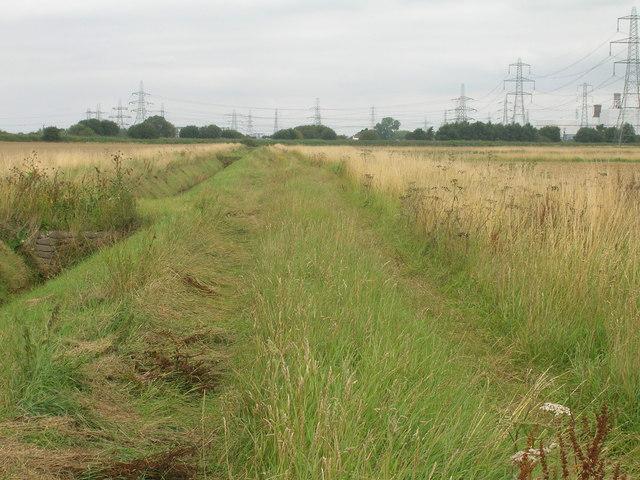 Farm track towards three Rivers