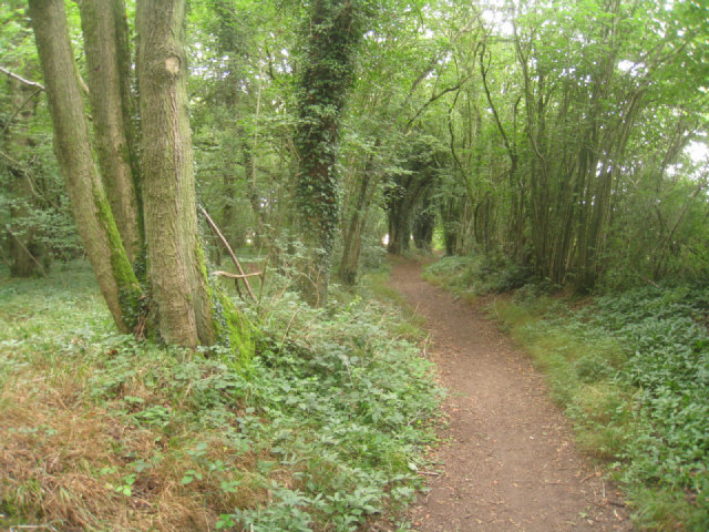 Path through Small's Copse