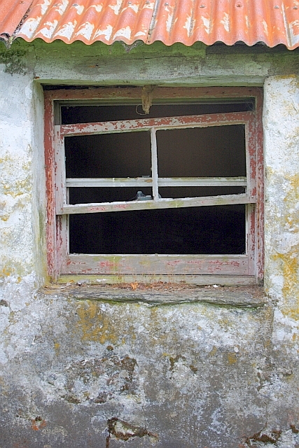 Window of Abandoned Croft