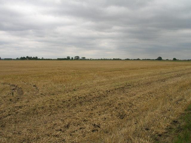 Farmland near Ealand Grange