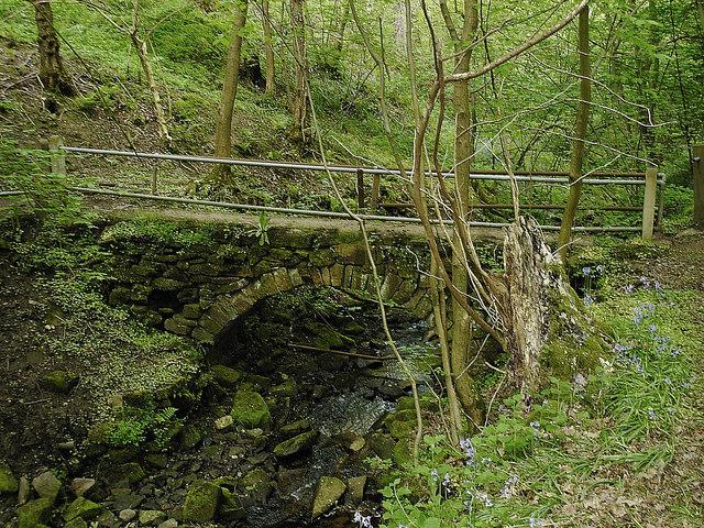 Lea - footbridge on footpath to Dethick