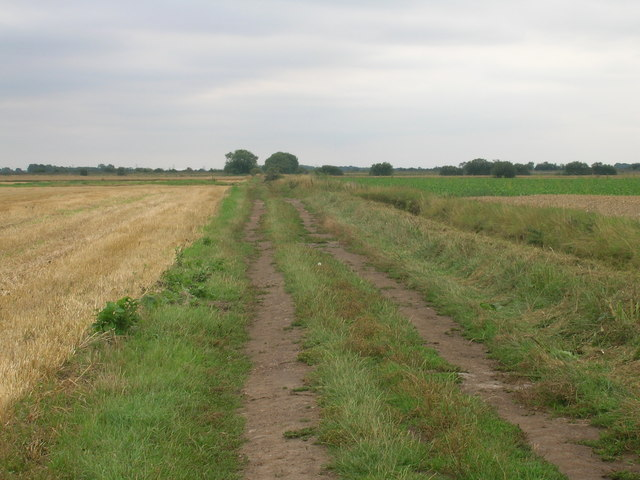 Bridleway running south of Outgate