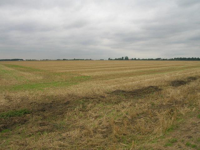 Farmland near Carr House