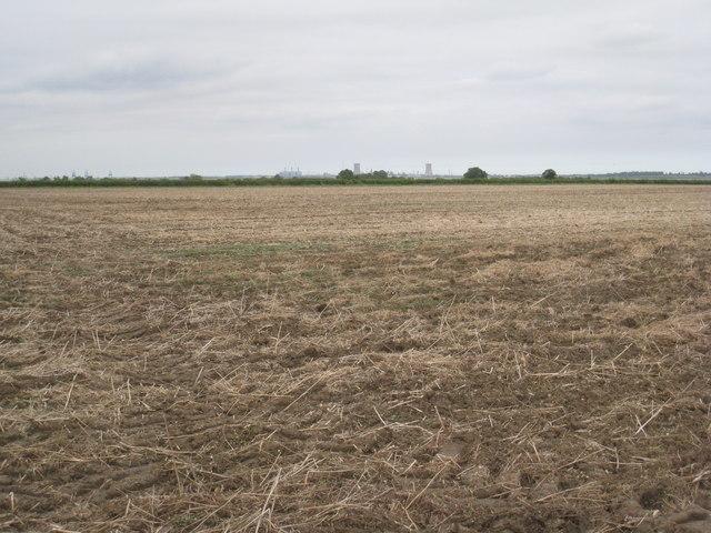 View across Halton Marshes