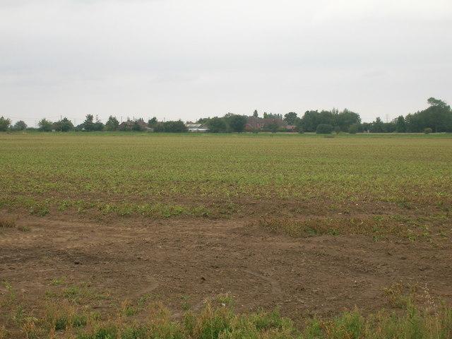 Farmland near The Ruddings