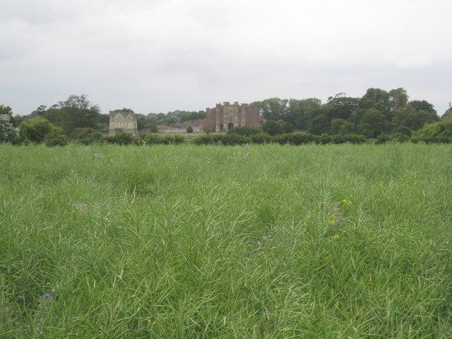 Thornton Abbey seen across a field of oilseed rape