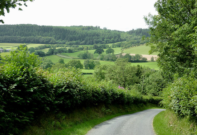 Lane to Olmarch, Ceredigion