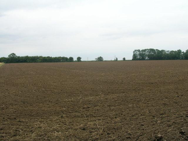 Farmland off Garthorpe Road