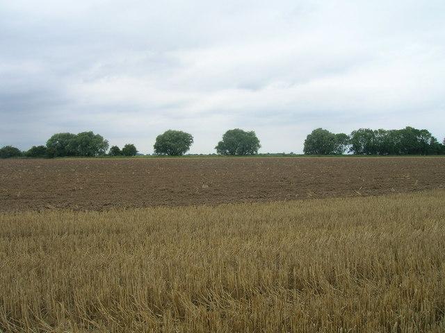 Farmland near Fockerby