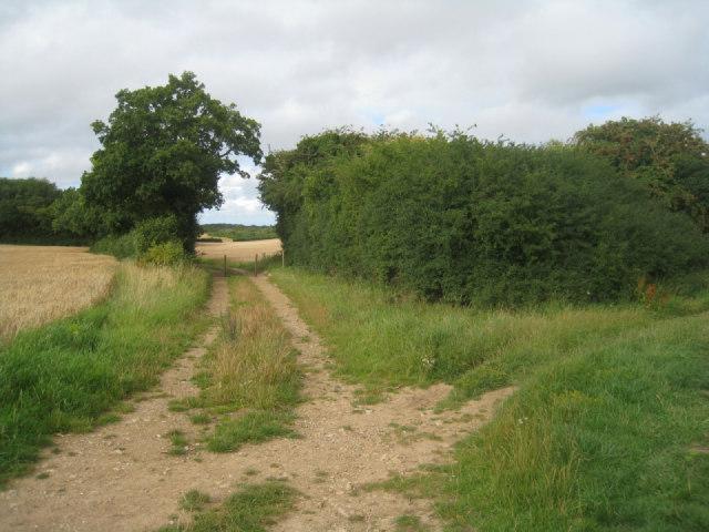 Track to Battledown Farm