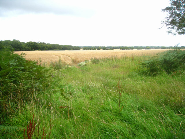 Great Wildcroft Field - (20.5 acres) by Small's Copse