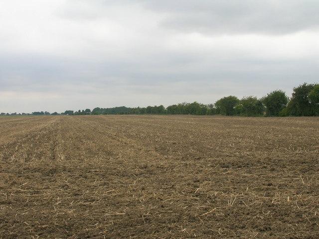 Farmland, Bracken Hill