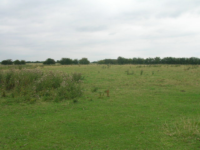 Grazing land, West Field