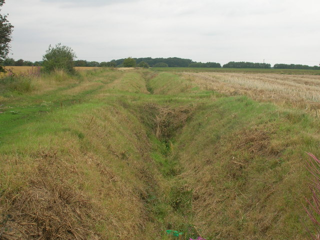 Field drain beside Westfield Lane
