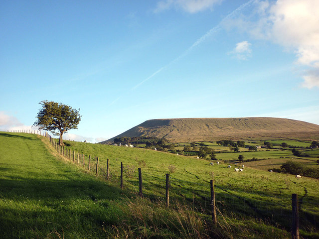 Pendle Hill and a fence above Twiston Beck