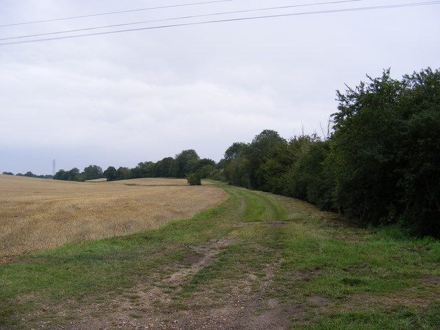 Footpath to the Mill Lane Byway to High Road