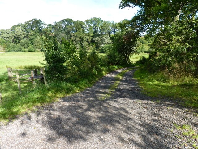 Back road to Battleby