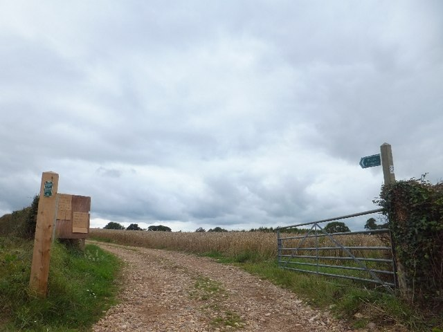 Footpath leading west from Cadhay Lane