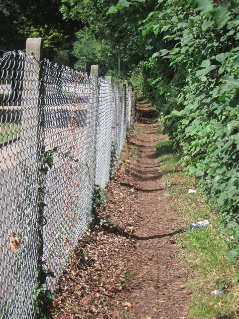 Footpath by Dogkennel Wood