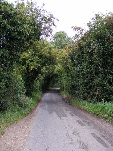 Swan Lane