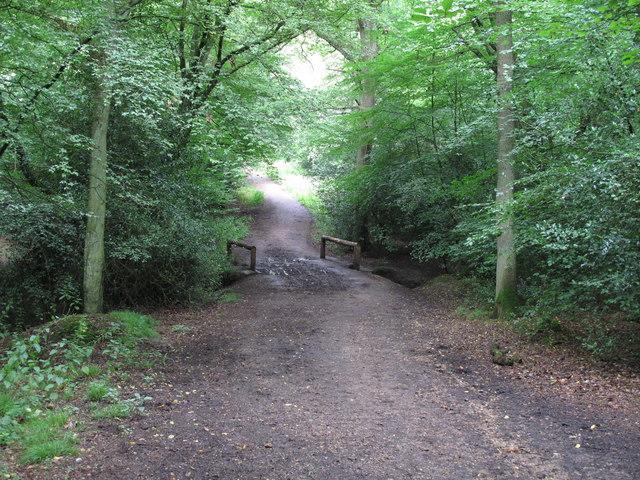 Footbridge in Epping Thicks