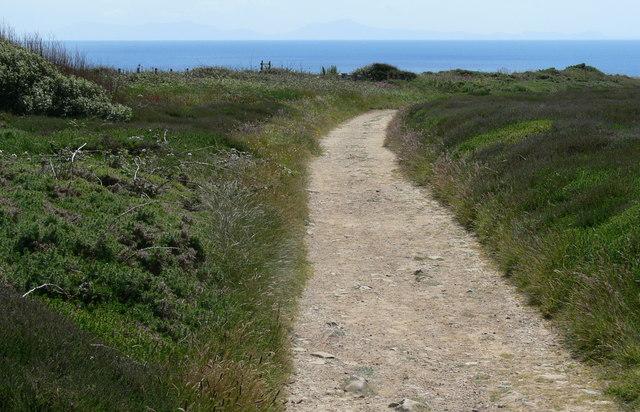 Track towards Graig Lwyd