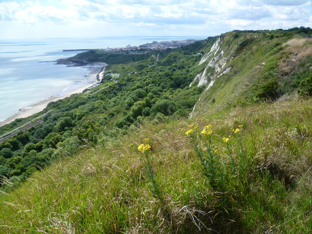 Cliff top view of Folkestone Warren at Capel-le-Ferne