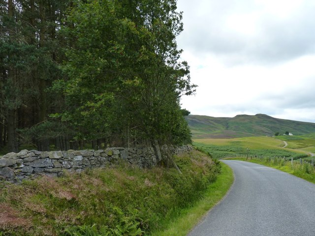 Corner of the wood, and road